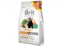 BRIT Animals Ferret